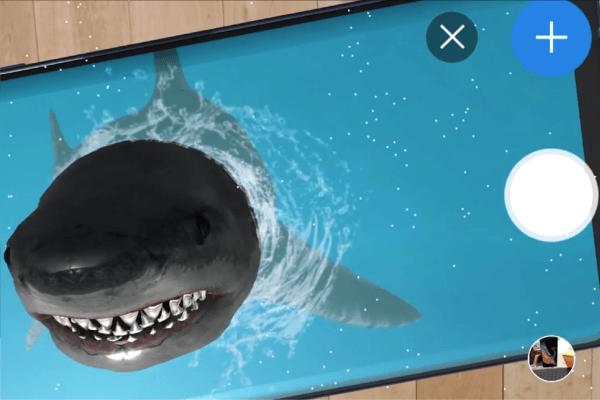shark03-17
